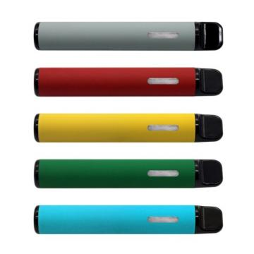 100 Disposable Lighters Bulk Wholesale Lot With Free Stand For Convenience Store